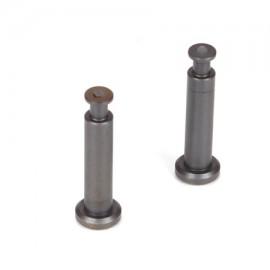 TLR244007 - 4X21MM TICN NITRIDE HINGE PINS